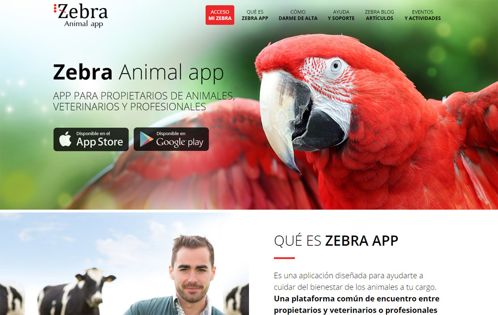 Zebra Animal App